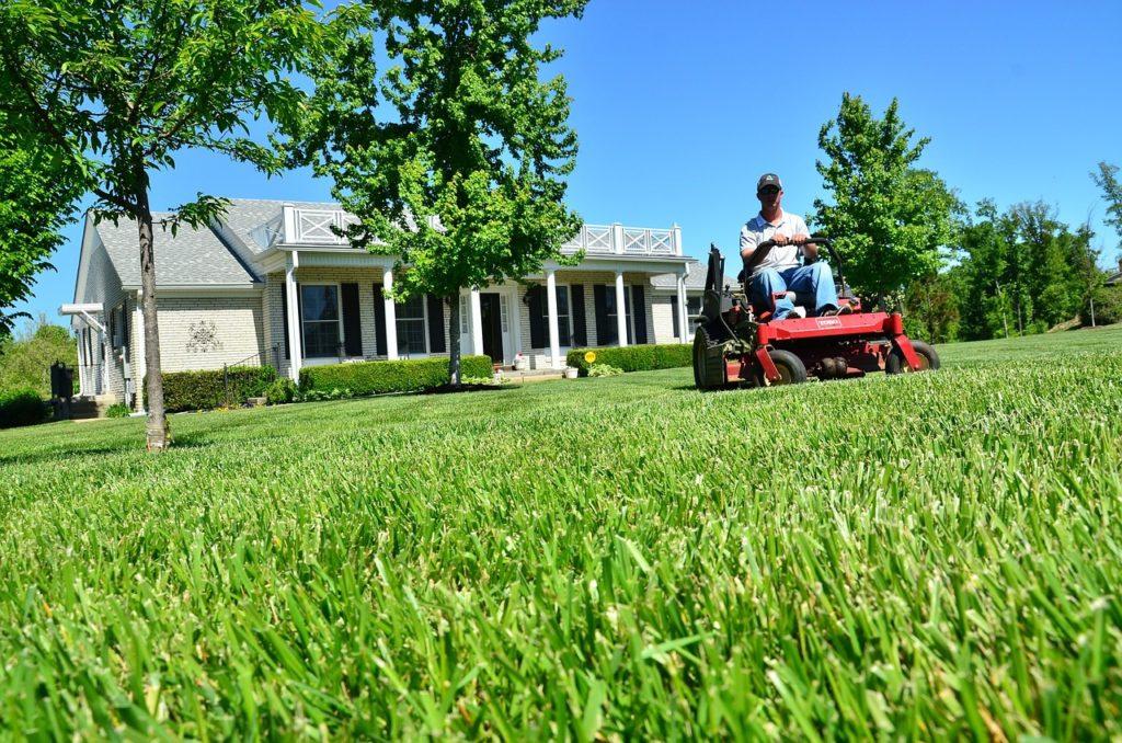 Welcher Gehörschutz beim Rasenmähen